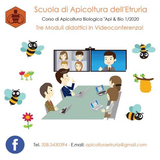CORSO API VIDEO CONFERENZA LOCANDINA